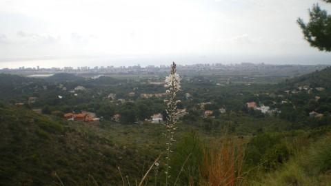 12-paisaje-opt