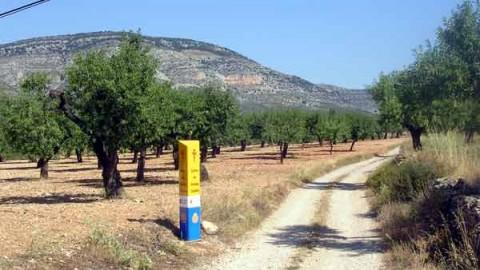 Mojón nº 17 - Comienzo del azagador de Segarra (Km 72,7)