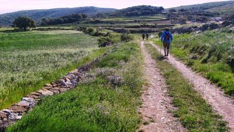 4ª Etapa Segarro-Vallivana 046