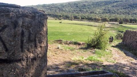 4ª Etapa Segarro-Vallivana 054