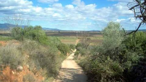Vía Augusta hacia el Plá de Cabanes