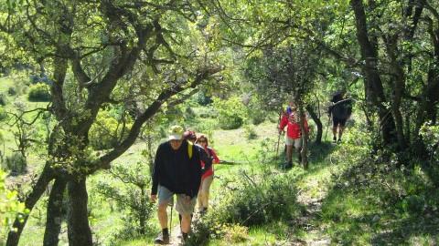 5º Etapa Vallivana-Morella 047