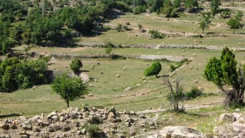 5º Etapa Vallivana-Morella 064