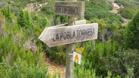 Caudiel ( Alto de las Palomas ) 061