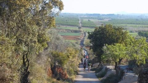 Ruta Jacobea CS, 2ª Etapa Puebla Tornesa-Sierra Engarceran 035