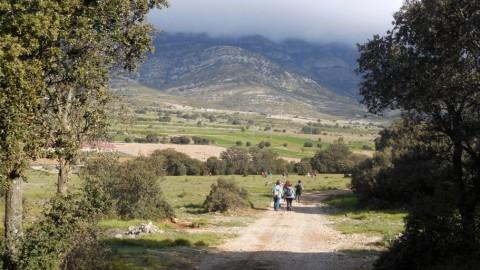 Ruta Jacobea 4ª etapa Segarrò-Vallivana 016