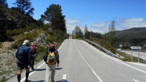 Ruta Jacobea 4ª etapa Segarrò-Vallivana 036