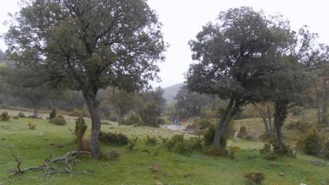 Ruta Jacobea 5ª etapa Vallivana-Morella 2016 021