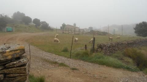 Ruta Jacobea 5ª etapa Vallivana-Morella 2016 035