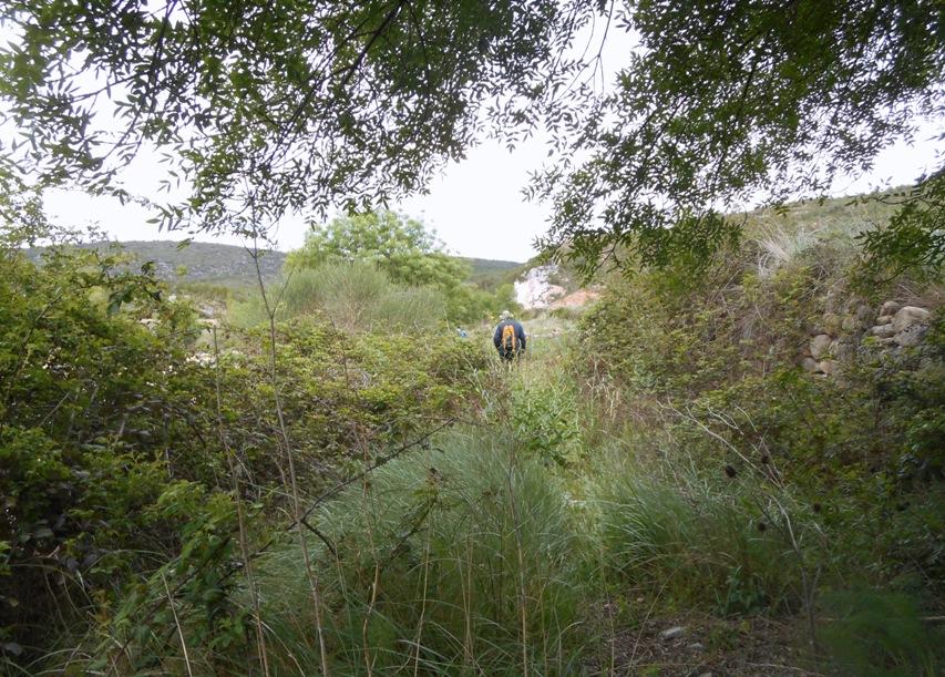 Ruta Jacobea 6ª Etapa Morella-Zorita 117