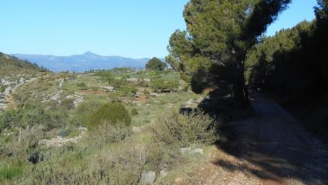 Ruta Jacobea CS, 3ª etapa Serra d`Engarceran-Segarró 020