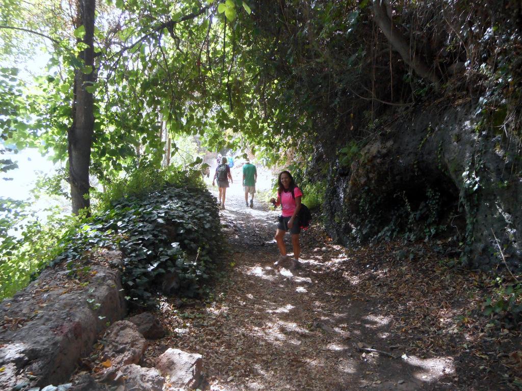 Castellon-Mare de Deu de Gracia-Castellon 057