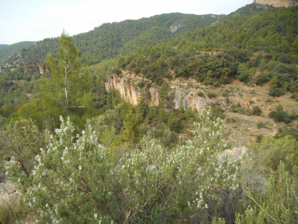 San Juan de Pe+¦agolosa - Villa Hermosa, por el Carbo. 052