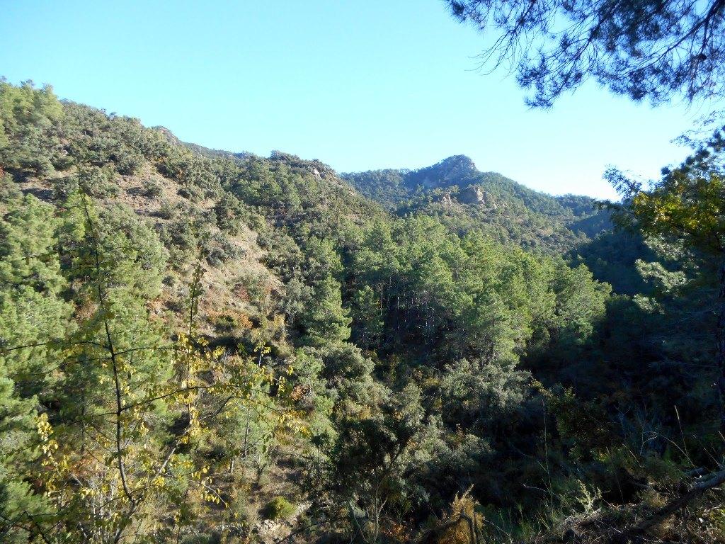 Algimia de Almonacid-Barranco de Aguas Negras-Cueva del Estuco 052