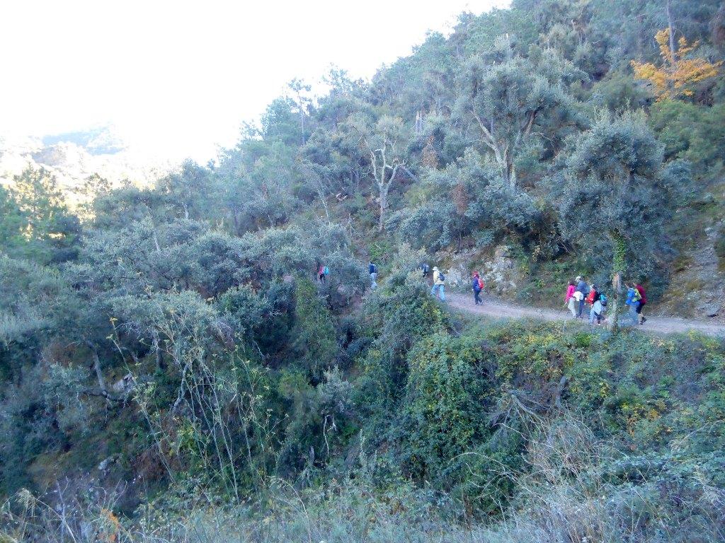 Algimia de Almonacid-Barranco de Aguas Negras-Cueva del Estuco 058