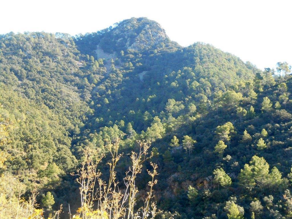 Algimia de Almonacid-Barranco de Aguas Negras-Cueva del Estuco 067
