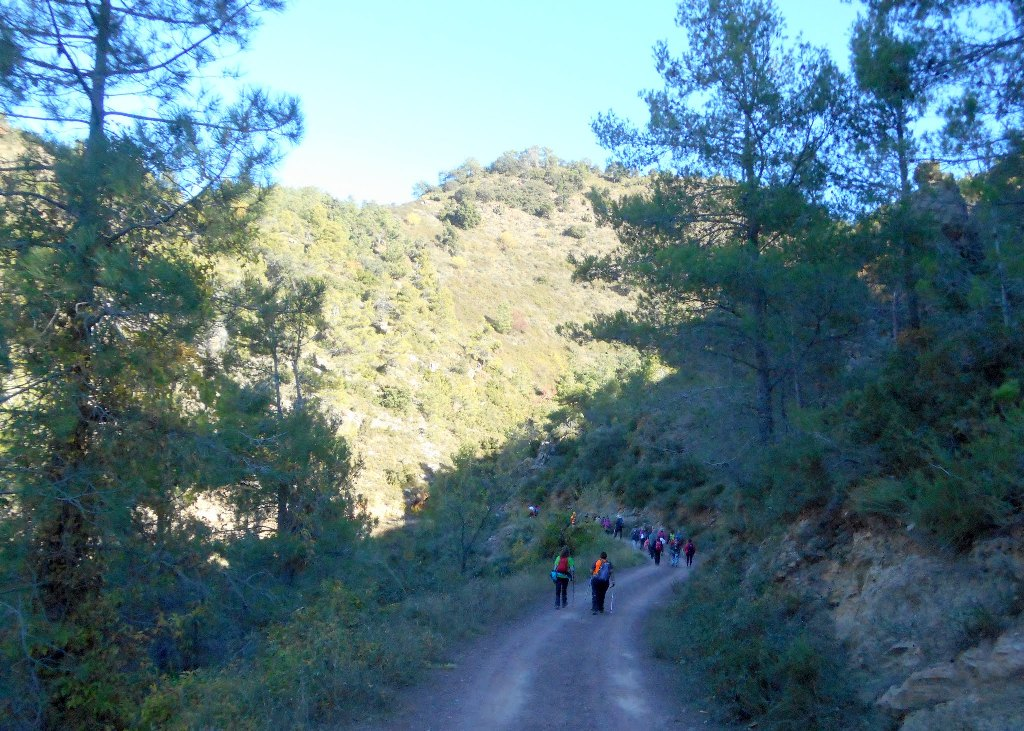 Algimia de Almonacid-Barranco de Aguas Negras-Cueva del Estuco 084