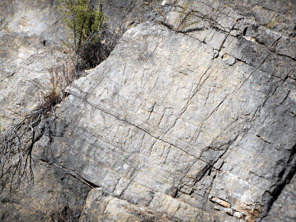 Algimia de Almonacid-Barranco de Aguas Negras-Cueva del Estuco 134