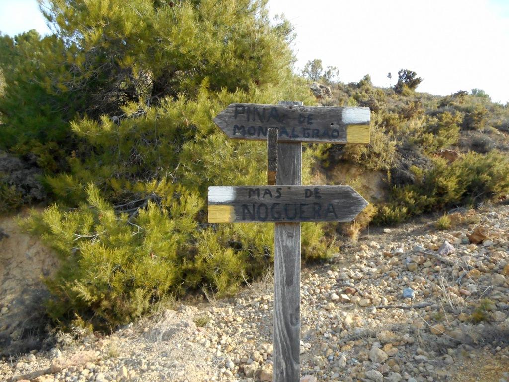 Pina de Montalgrao - Cueva de Cerdaña 010
