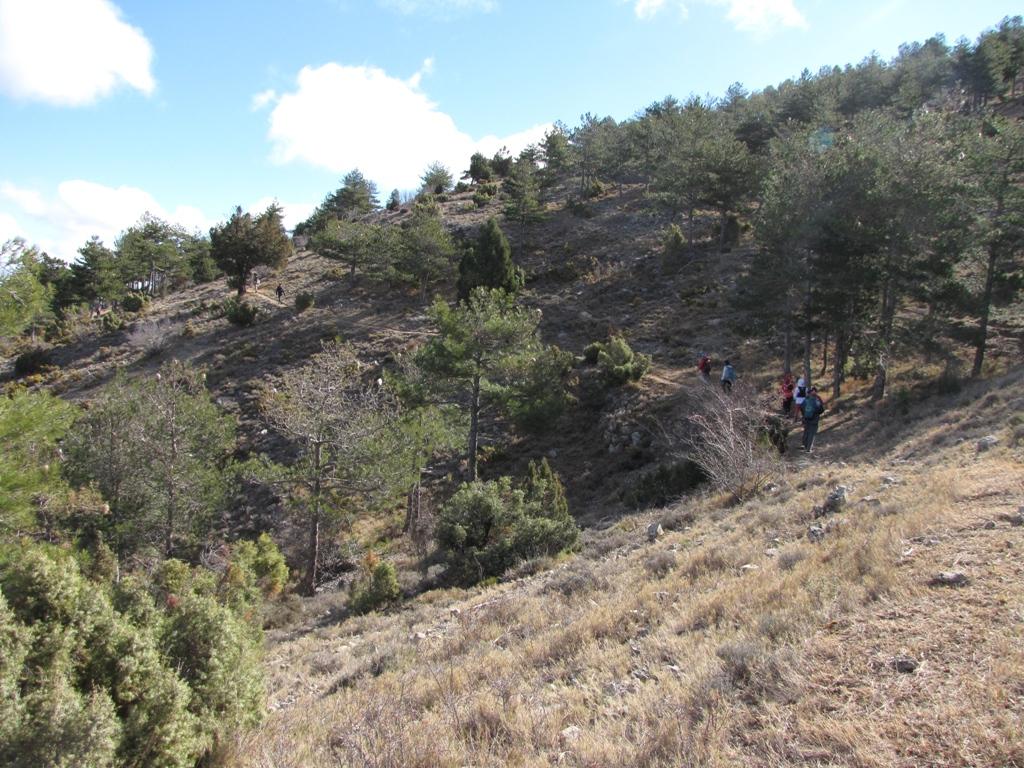 Pina de Montalgrao-Cueva Cerdaña 029