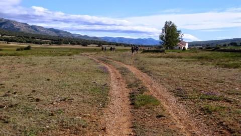 4ª Etapa Segarro-Vallivana 036