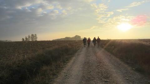Los peregrinos contemplan la salida del sol mientras caminan