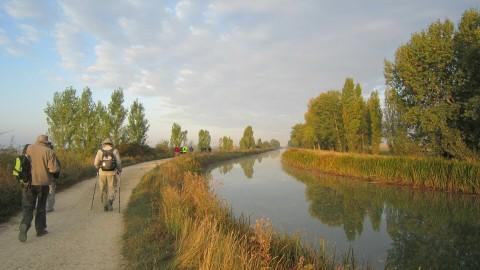 Caminando junto al Canal de Castilla