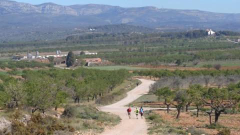 Ruta Jacobea CS, 2ª Etapa Puebla Tornesa-Sierra Engarceran 042
