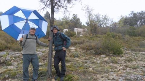 Ruta Jacobea 5ª etapa Vallivana-Morella 2016 024