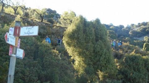 Ruta Jacobea CS, 3ª etapa Serra d`Engarceran-Segarró 039