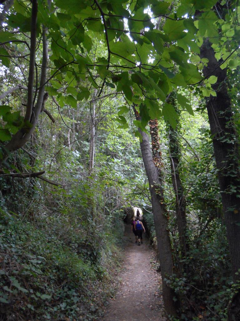 Castellon-Mare de Deu de Gracia-Castellon 041