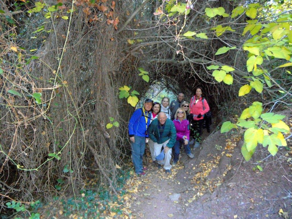 Algimia de Almonacid-Barranco de Aguas Negras-Cueva del Estuco 019