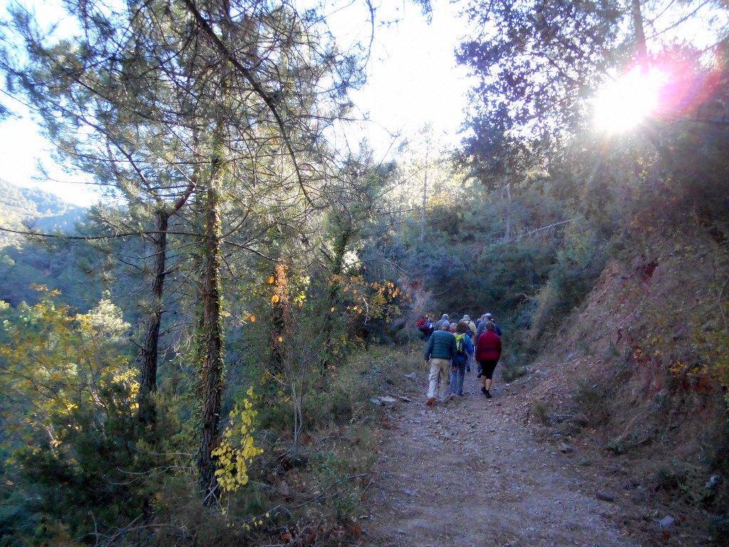Algimia de Almonacid-Barranco de Aguas Negras-Cueva del Estuco 053