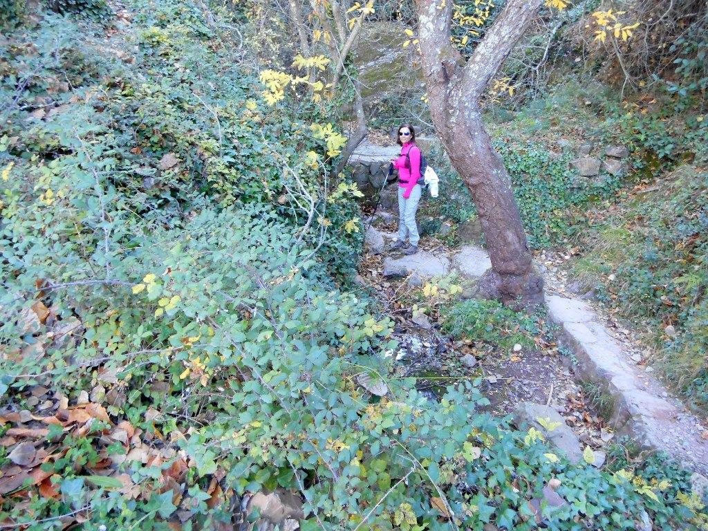 Algimia de Almonacid-Barranco de Aguas Negras-Cueva del Estuco 063