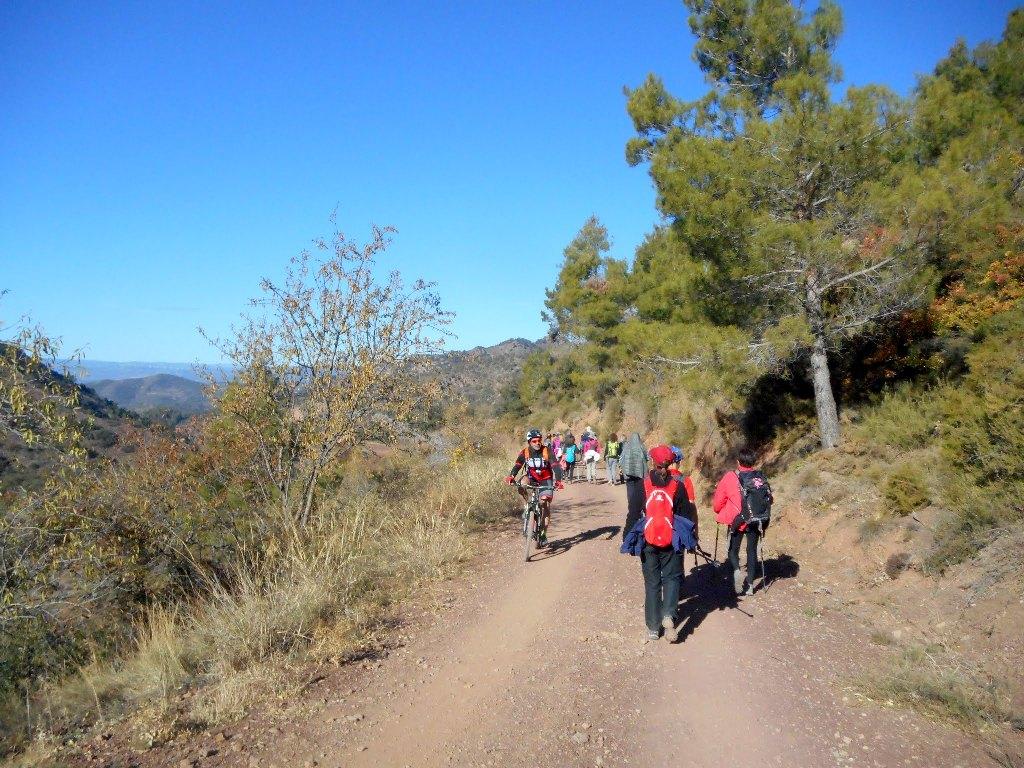 Algimia de Almonacid-Barranco de Aguas Negras-Cueva del Estuco 076