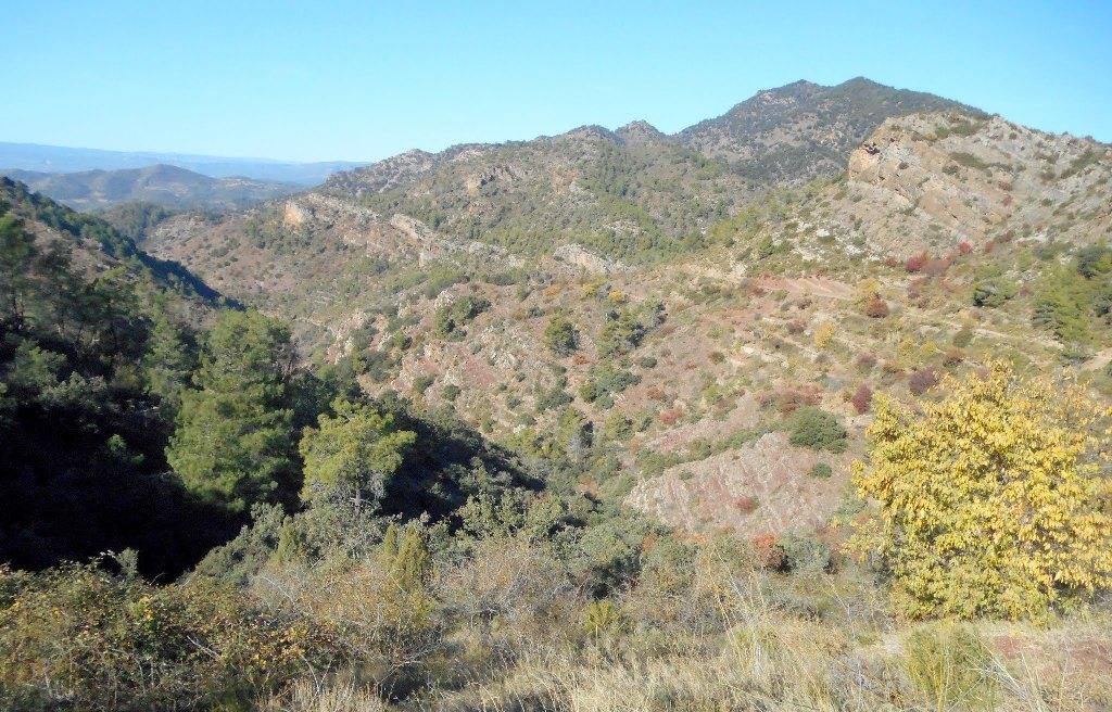 Algimia de Almonacid-Barranco de Aguas Negras-Cueva del Estuco 083