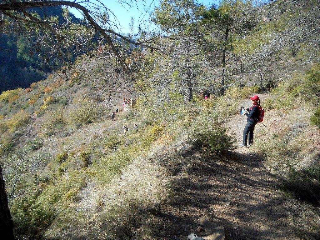 Algimia de Almonacid-Barranco de Aguas Negras-Cueva del Estuco 129