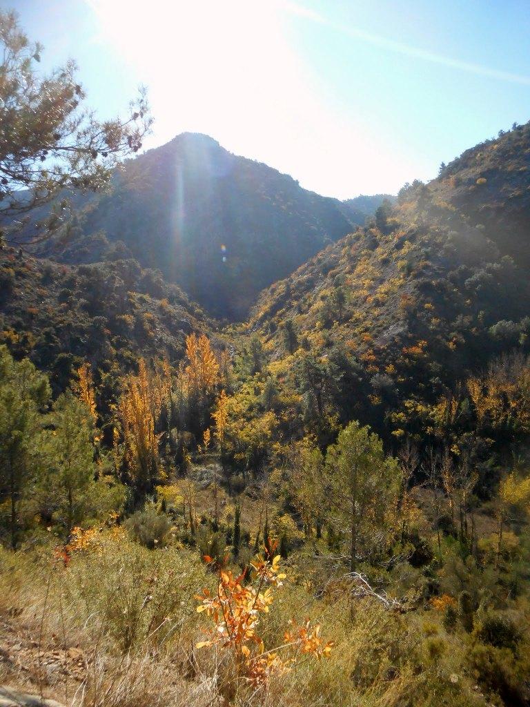 Algimia de Almonacid-Barranco de Aguas Negras-Cueva del Estuco 130