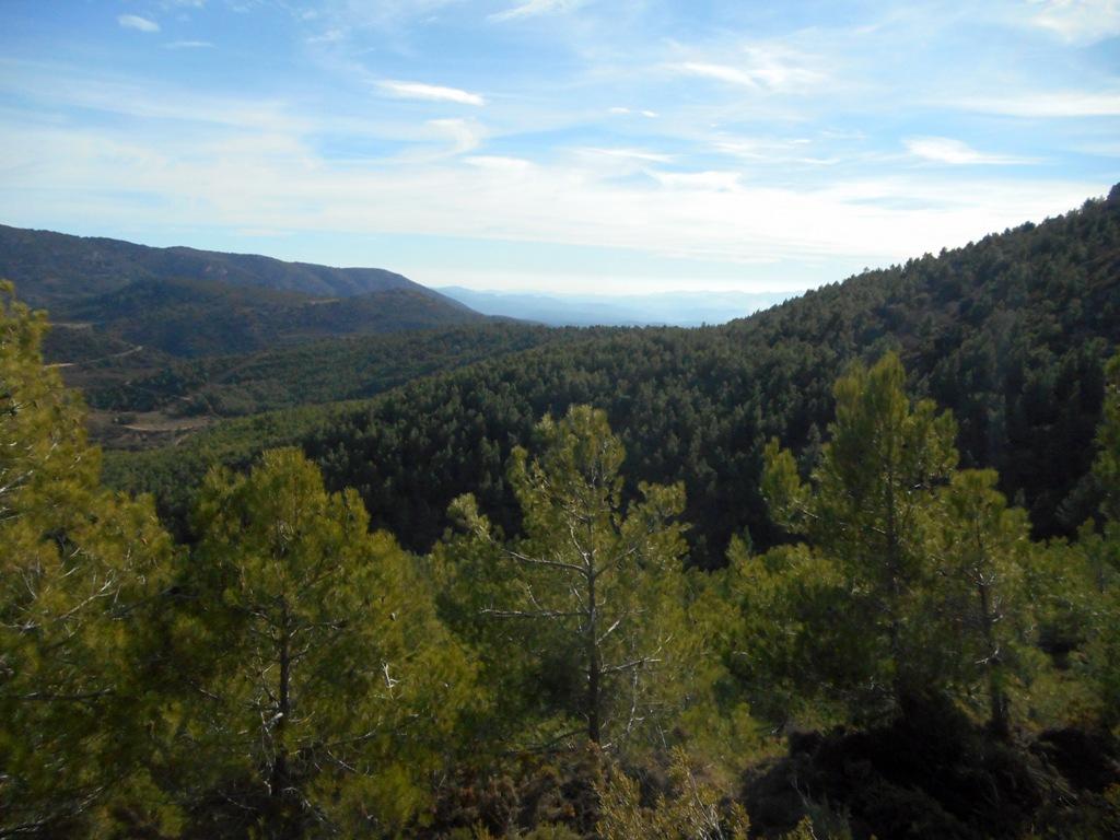 Pina de Montalgrao - Cueva de Cerdaña 053