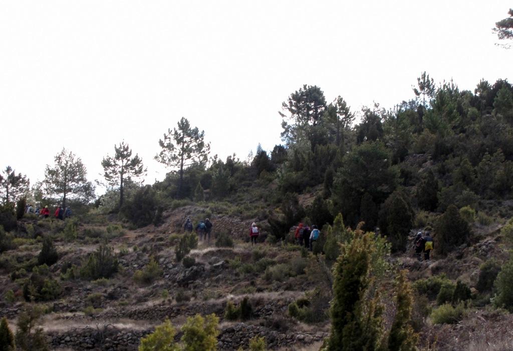 Pina de Montalgrao-Cueva Cerdaña 022