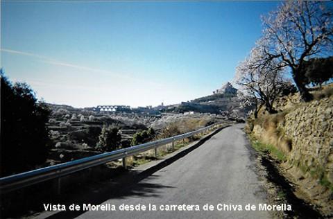 09-Morella-01-500