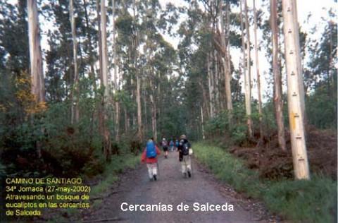 106salceda-01