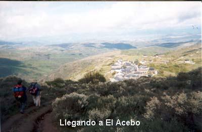 ElAcebo01-01