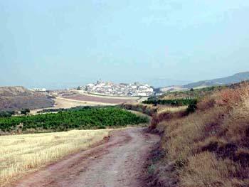 Llegando a Cirauqui