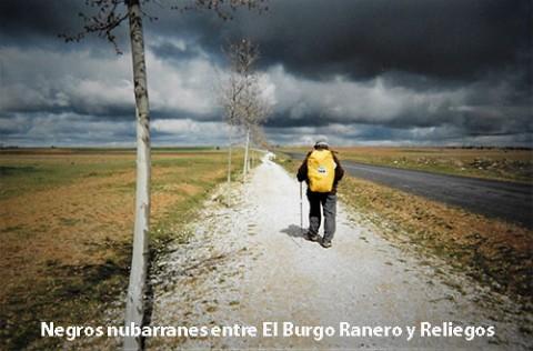 entreBurgoyReliegos-500