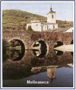 molina2-01